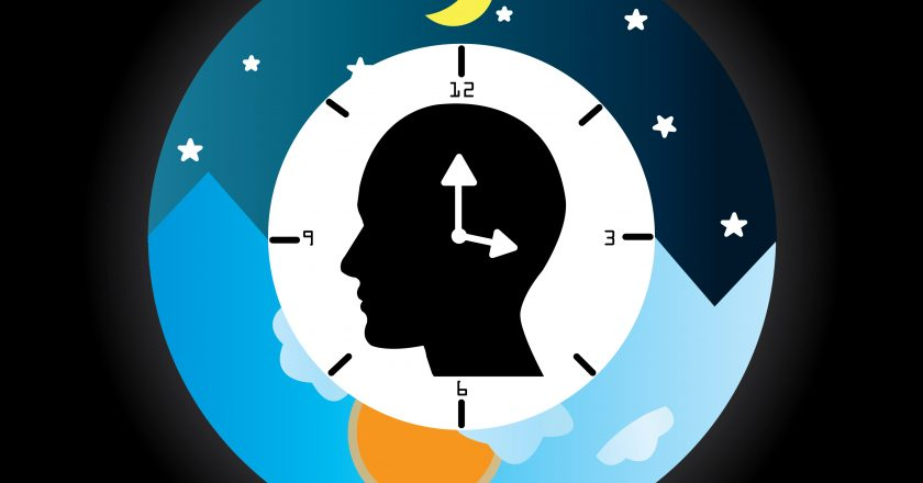 Circadian Rhythm and Potential risks of shift workers